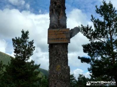 Garganta del Arroyo de Minguete - Puerto de Fuenfría;las mejores rutas de senderismo en madrid ruta